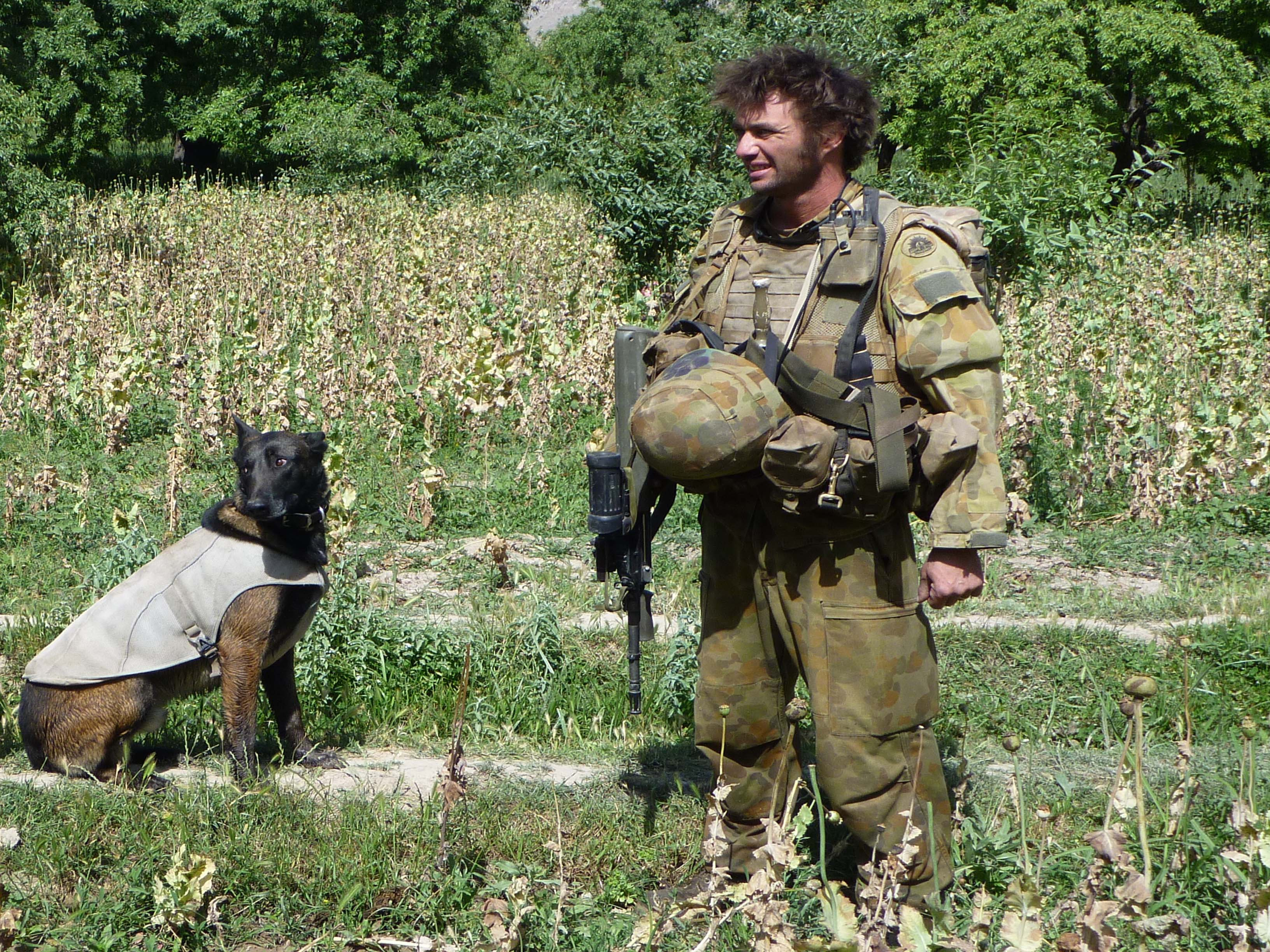 Corporal Craig Turnbull and TANK in a poppy field.